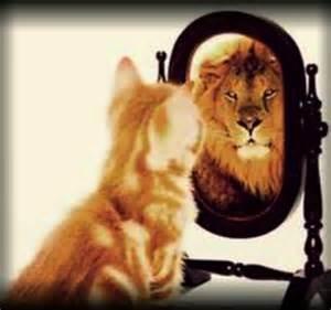 lion in mirror 2